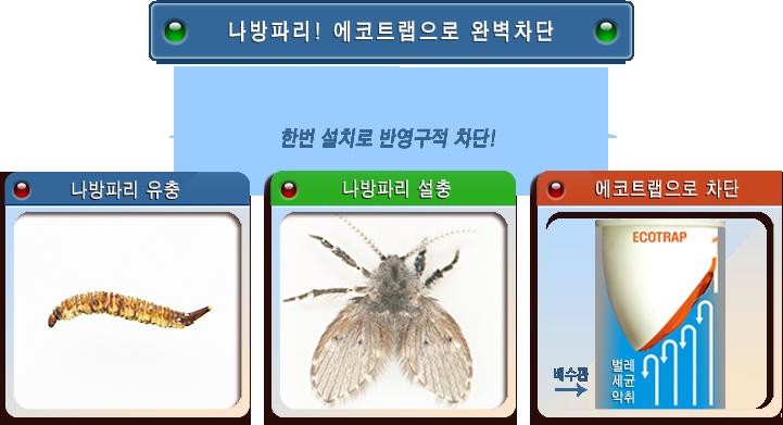 bug3.png